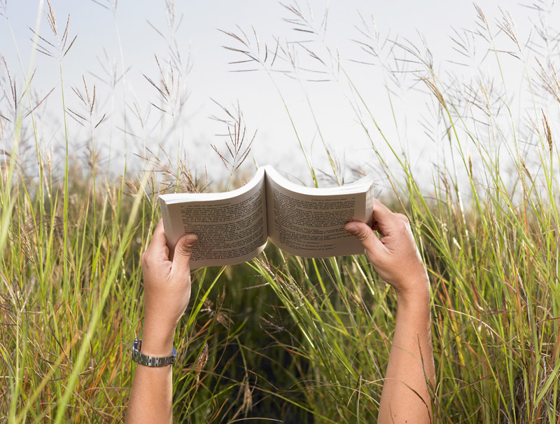 Man Reading Book in Meadow --- Image by © Morgan David de Lossy/Corbis