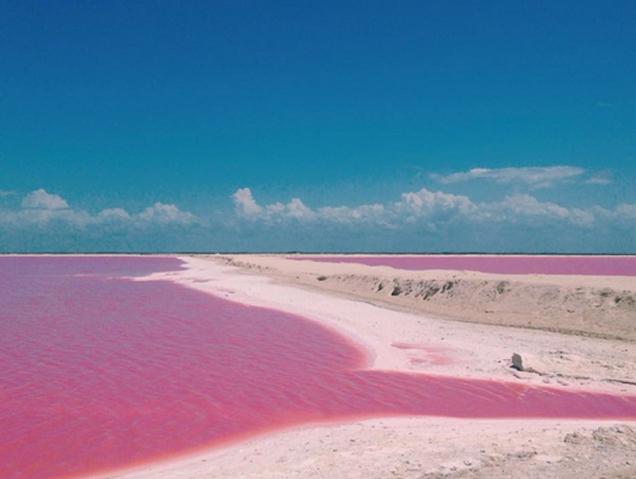 Este lago rosa es el lugar más 'instagrameable' del mundo