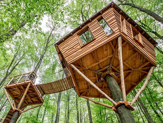 Las casitas del rbol m s espectaculares del mundo s for Hotel con casas colgadas de los arboles